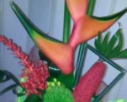Aviary Photo_130471339745009233 (2).jpg