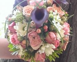 Aviary Photo_130457755485275559.jpg